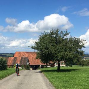 bodensee-saentis-classic-rennrad-reise-urlaub